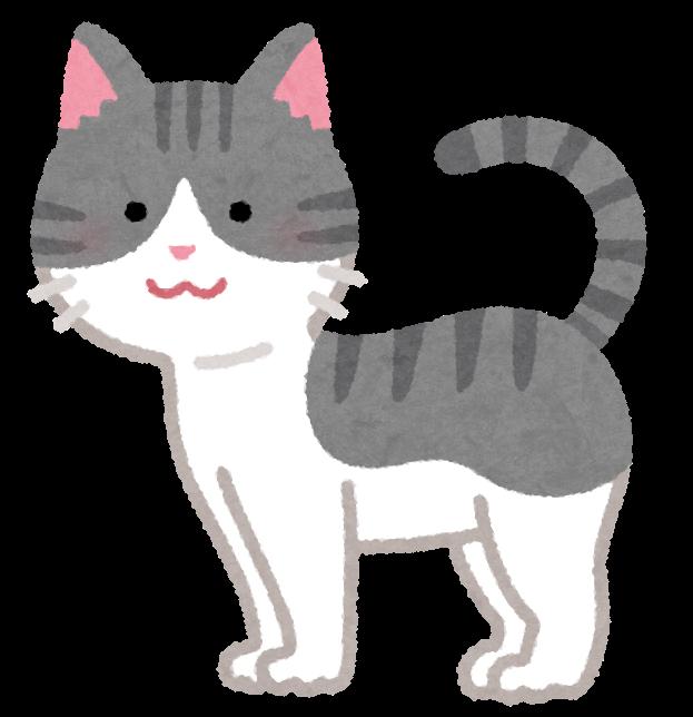 立っている猫のイラスト