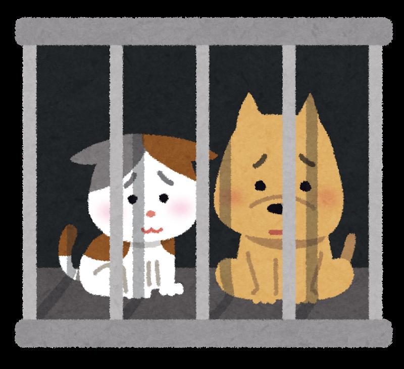 牢屋に入れられて殺処分をまつ犬猫のイラスト